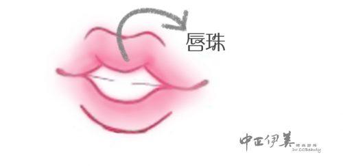 中正伊美M型唇珠